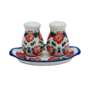 Salt and pepper shakers (A12 D37)